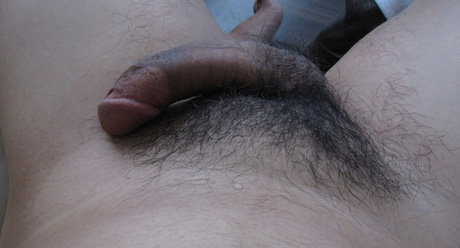 Semi erect Asian penis